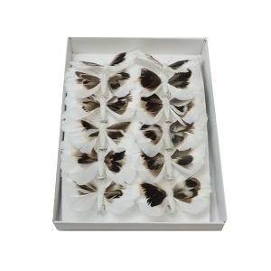 Set fluturi 8cm - 12buc  COD S22