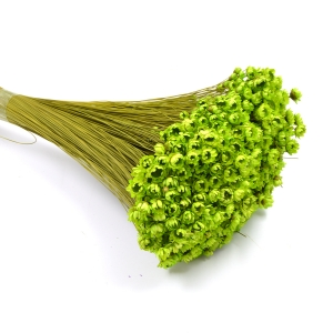 Glixia natural conservata boboc Verde 100gr