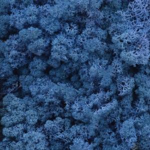 Licheni natural 500gr albastru royal